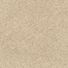 Shaw Floors Anso Colorwall Designer Twist Platinum (s) Chenille Soft 00110_EA091