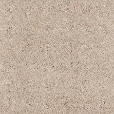 Shaw Floors Anso Colorwall Designer Twist Platinum (s) Candlewick 00124_EA091