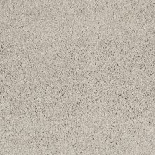 Shaw Floors Anso Colorwall Designer Twist Platinum (s) Putty 00125_EA091