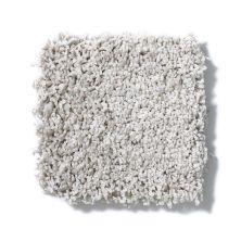 Shaw Floors Anso Colorwall Designer Twist Platinum (s) Putty 00125_EA091