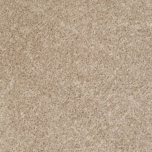 Shaw Floors SFA Dynamic World 12 (s) Stucco 00103_EA143
