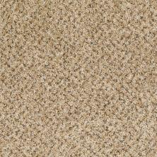 Shaw Floors SFA Dynamic World (b) Sand Stone 00211_EA145
