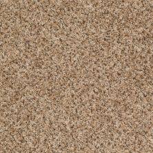 Shaw Floors SFA Dynamic World (b) Leather Bound 00711_EA145