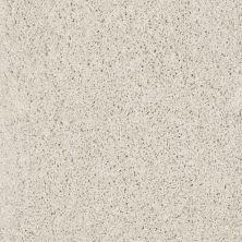 Shaw Floors SFA Loyal Beauty I Polar 00104_EA162
