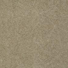 Shaw Floors SFA Loyal Beauty I Clay Stone 00108_EA162