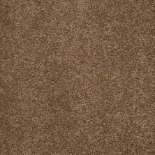 Shaw Floors SFA Loyal Beauty I Bonsai 00324_EA162