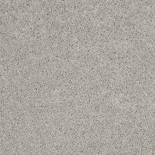 Shaw Floors SFA Loyal Beauty I Sheer Silver 00500_EA162