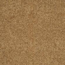 Shaw Floors SFA Loyal Beauty I Country Wheat 00701_EA162