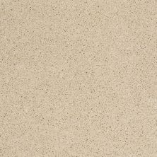 Shaw Floors SFA Loyal Beauty II Cashew 00102_EA163