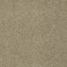 Shaw Floors SFA Loyal Beauty II Clay Stone 00108_EA163