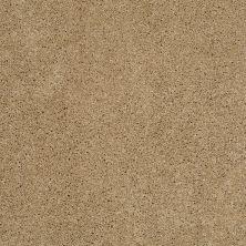 Shaw Floors SFA Loyal Beauty II Cologne Mist 00128_EA163