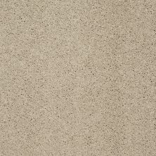 Shaw Floors SFA Loyal Beauty II Stucco 00129_EA163