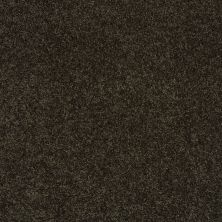 Shaw Floors SFA Loyal Beauty II Magic Emerald 00304_EA163