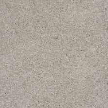 Shaw Floors SFA Loyal Beauty II Sheer Silver 00500_EA163