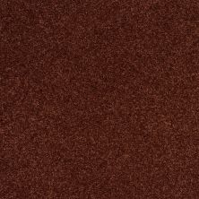 Shaw Floors SFA Loyal Beauty II Terra Cotta 00600_EA163