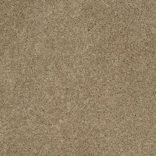 Shaw Floors SFA Loyal Beauty II Driftwood 00700_EA163