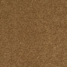 Shaw Floors SFA Loyal Beauty II Country Wheat 00701_EA163