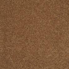 Shaw Floors SFA Loyal Beauty II English Toffee 00703_EA163