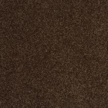 Shaw Floors SFA Loyal Beauty II Coffee Bean 00705_EA163