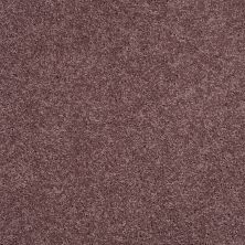 Shaw Floors SFA Loyal Beauty II Grape Fizz 00900_EA163