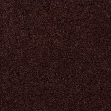 Shaw Floors SFA Loyal Beauty II Plum Delight 00902_EA163