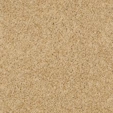 Shaw Floors SFA Loyal Beauty III Sun Shower 00200_EA164