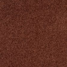 Shaw Floors SFA Loyal Beauty III Terra Cotta 00600_EA164