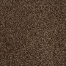 Shaw Floors SFA Loyal Beauty III Coffee Bean 00705_EA164
