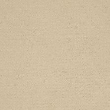 Shaw Floors SFA Loyal Beauty Pattern Cashew 00102_EA183