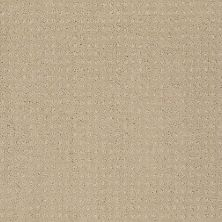 Shaw Floors SFA Loyal Beauty Pattern Taffeta 00107_EA183