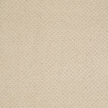 Shaw Floors SFA Sincere Beauty Loop Cashew 00102_EA184
