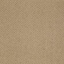 Shaw Floors SFA Sincere Beauty Loop Cologne Mist 00128_EA184