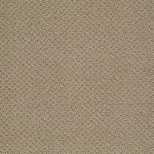 Shaw Floors SFA Sincere Beauty Loop Driftwood 00700_EA184