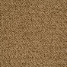 Shaw Floors SFA Sincere Beauty Loop Country Wheat 00701_EA184