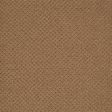 Shaw Floors SFA Sincere Beauty Loop English Toffee 00703_EA184
