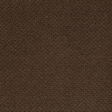 Shaw Floors SFA Sincere Beauty Loop Coffee Bean 00705_EA184