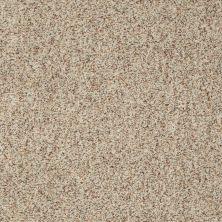 Shaw Floors SFA Fundamentals (a) Sands Of Time 00139_EA498
