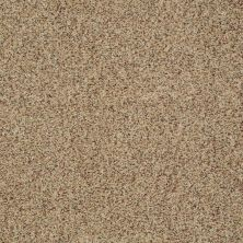 Shaw Floors SFA Fundamentals (a) Bamboo 00230_EA498