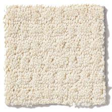Shaw Floors SFA Kick Off Winter White 00100_EA501