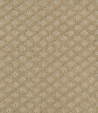 Shaw Floors SFA Excel Wool Skein 00111_EA502