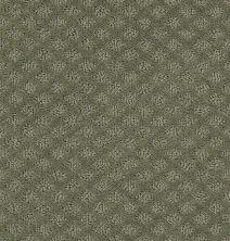 Shaw Floors SFA Excel Silver Sage 00310_EA502