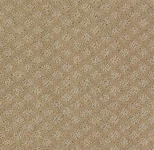 Shaw Floors SFA Excel Mushroom 00703_EA502