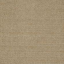 Shaw Floors SFA Step Up Wool Skein 00111_EA504