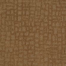 Shaw Floors SFA Right Away Leather Bound 00702_EA505