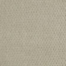 Shaw Floors SFA In Time Gray Flannel 00511_EA506