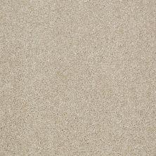 Shaw Floors SFA Inspiring Frost 00104_EA508