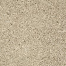 Shaw Floors SFA Inspiring Field Stone 00105_EA508