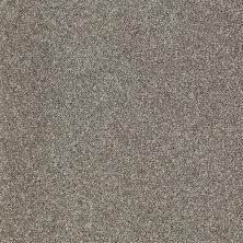 Shaw Floors SFA Inspiring Pewter 00513_EA508