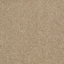 Shaw Floors SFA Inspiring Natural Wood 00701_EA508
