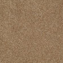Shaw Floors SFA Inspiring Leather Bound 00702_EA508